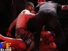 darabedyan_sharkfights_08
