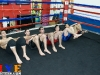 hyefighters-gfc-muay-thai-18