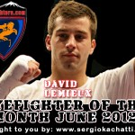 HyeFighter Of The Month: June 2012 – David Lemieux